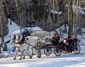 Sherwood Horse and Carriage