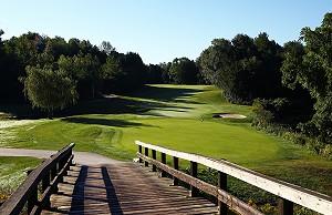 Briars Golf