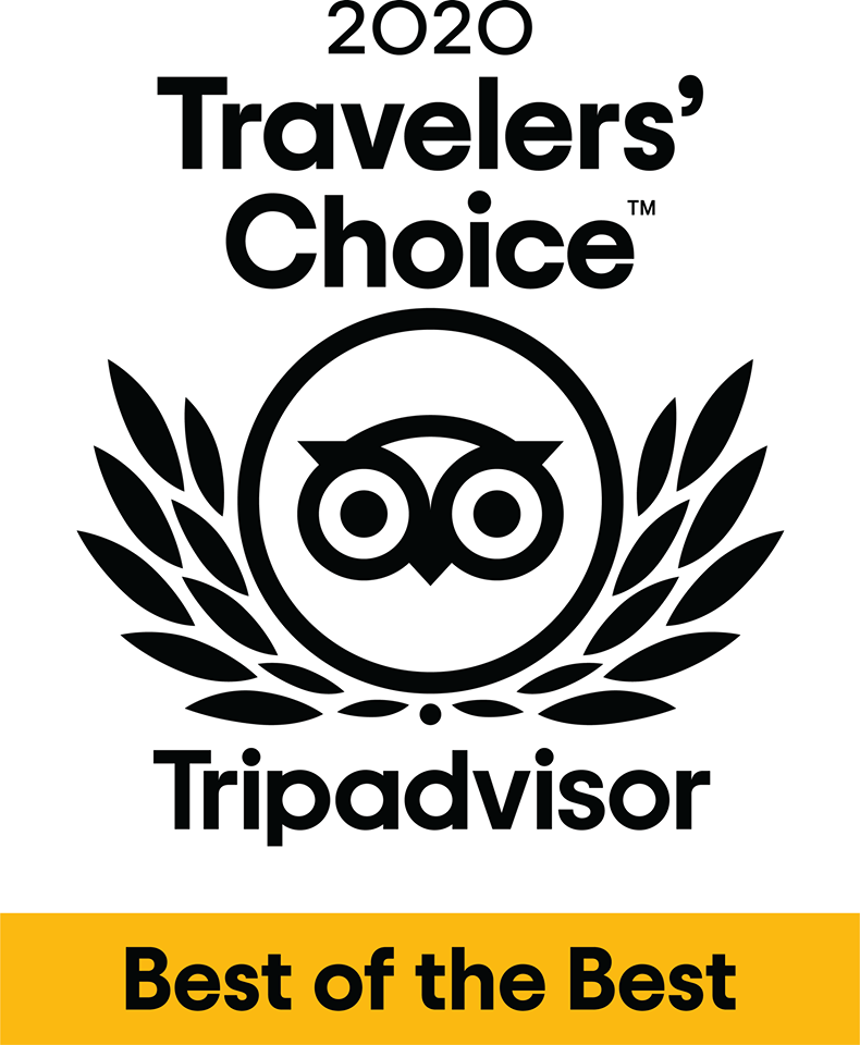 Image of trip advisor award badge